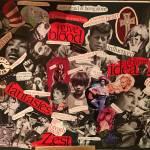 Shirley Stevenson Profile Picture