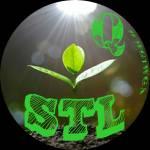 STL Anon profile picture